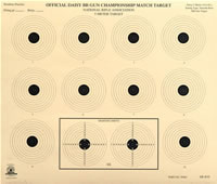 5 Meter Air Rifle Ten Bullseye